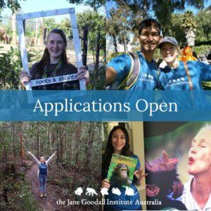 Applications OPEN-3 copy 2