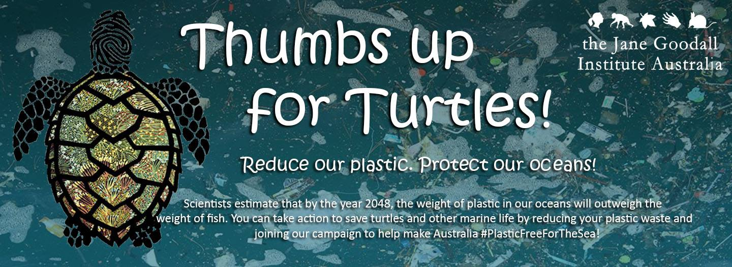 Thumbs up for Turtles. Jane Goodall Institute Australia JGIA. Reduce our Plastic, Protect our Oceans